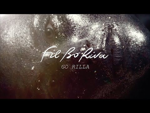 FIL BO RIVA - Go Rilla (Official Video)